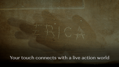 Erica - Interactive Thrillerのおすすめ画像4