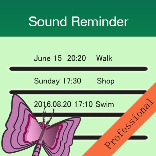 Sound Reminder