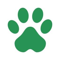 Dog Walks