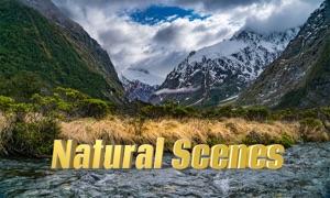 Natural Scenes 4K