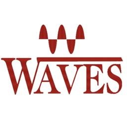 Waves Shiv R. Goel