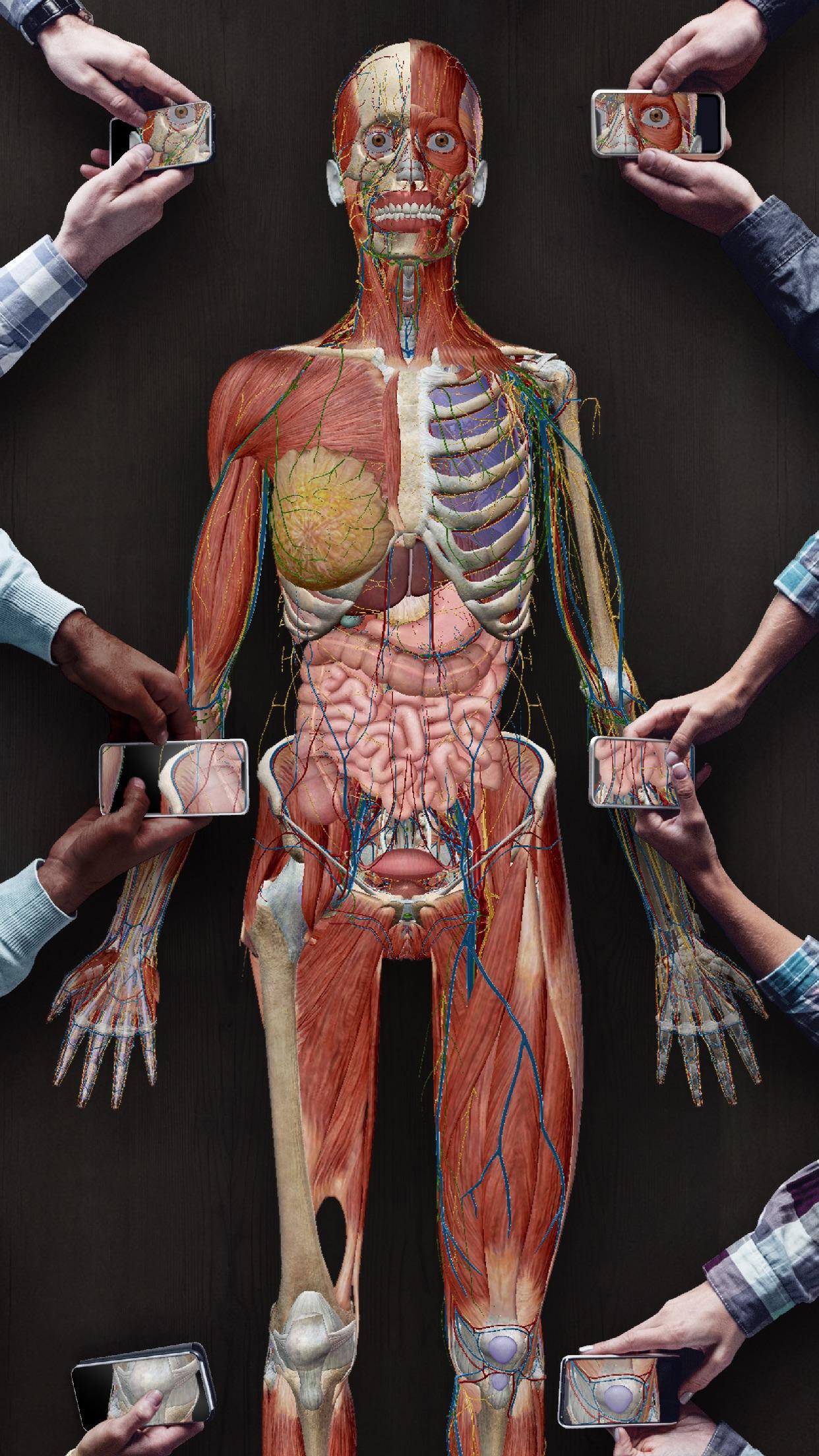 Screenshot do app Human Anatomy Atlas 2021