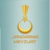 ismail ACIKYUREK - Jandarma Mevzuat artwork