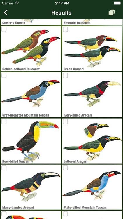 All Birds Colombia field guide screenshot-3
