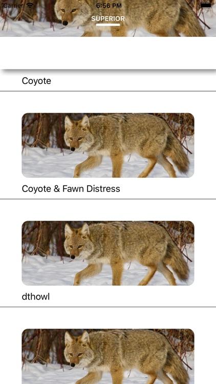 Coyote Calls - Hunting Sounds screenshot-3