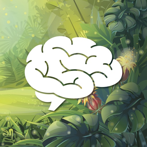 Find the Brain
