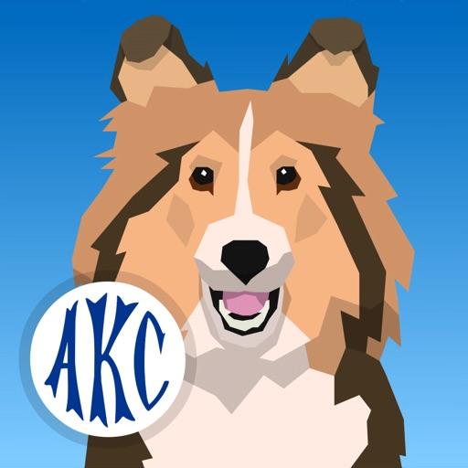 AKC Math Agility