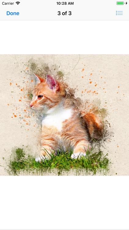 Cat Portraits screenshot-5
