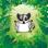 Mitzi Sugar Bear Emoji's