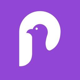 Pigeon - NYC Subway Transit
