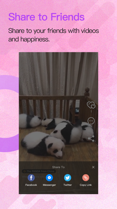 Screenshot of Serendipity Video App