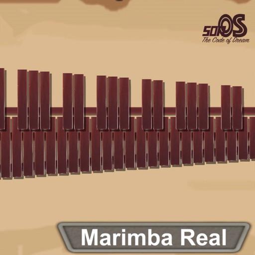 Marimba, Xylophone, Vibraphone