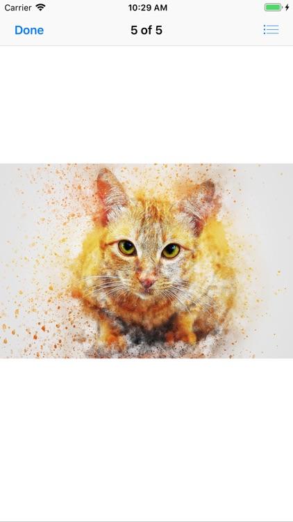 Cat Portraits screenshot-9