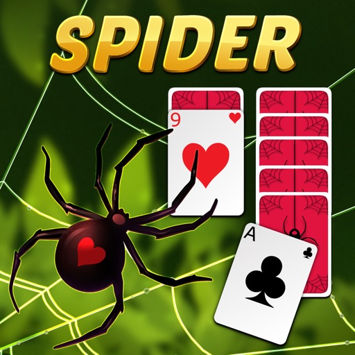 Spider Solitaire with Themes by WildTangent, Inc
