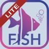 Fish Bait Lure Lite Quiz 2019 Reviews