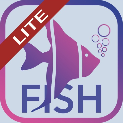 Fish Bait Lure Lite Quiz 2019