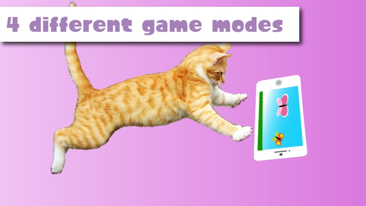 HappyCats games for Cats