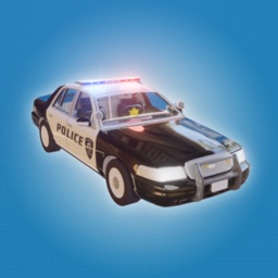 Police Chase!