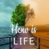 How is Life - Moods & Therapy