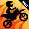 Top Free Games - Bike Race Pro: Motor Racing kunstwerk