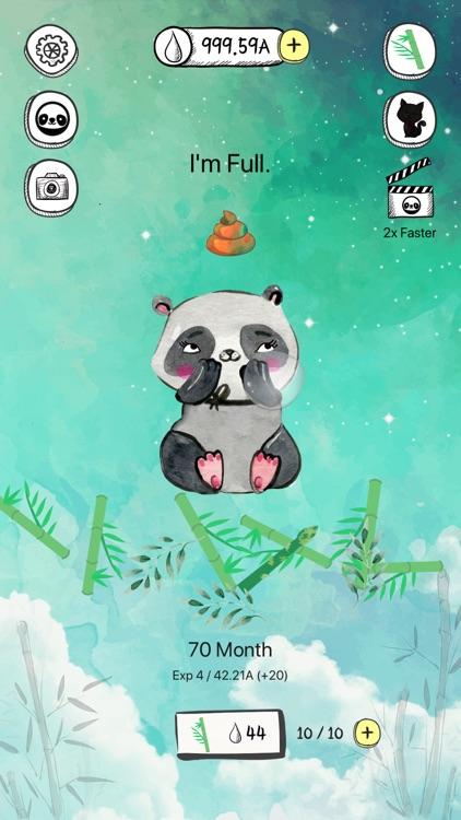 Panda's life