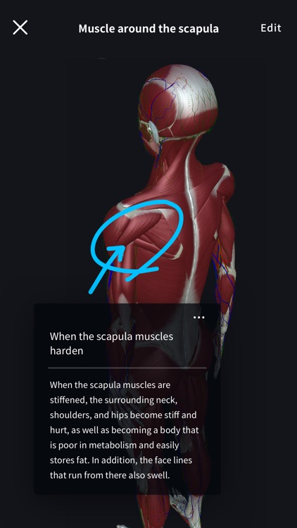 3D anatomy teamLabBody2020 screenshot-8
