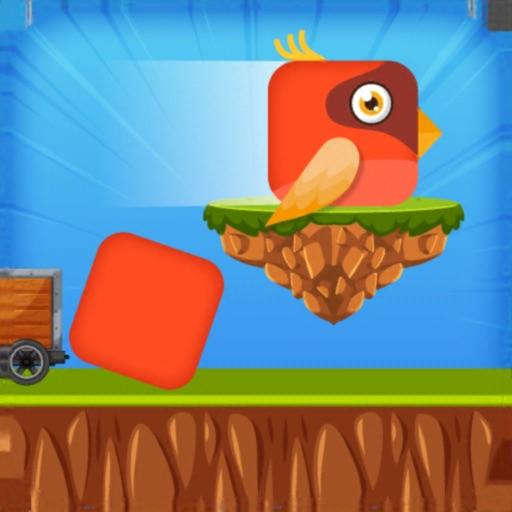 Square Birdy