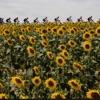 VR Guide: 2021 Tour de France