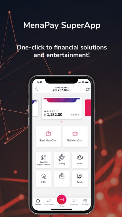 MenaPay screenshot-0