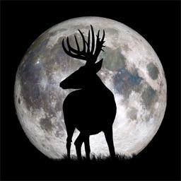 Deer Hunters Moon Guide