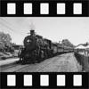 Retro Film - 复古电影8mm视频制造商