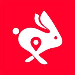 Rabbit: Compras y Entregas