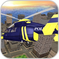 Activities of Missions Pilot:  Police Helico