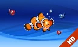 Aquarium live HD TV