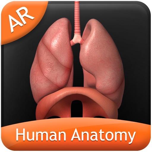 Human Anatomy for iPhone