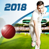 Cricket Captain 2018 - Childish Things Ltd