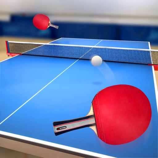 Table Tennis Touch Review