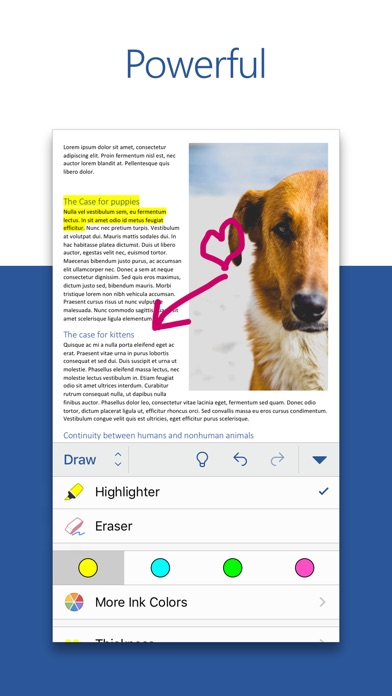 Microsoft Word Screenshot on iOS