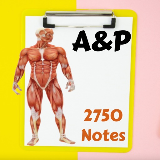 Human Anatomy & Physiology A&P