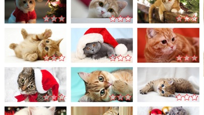 Screenshot for Cute Kittens - Easy Puzzle in United States App Store