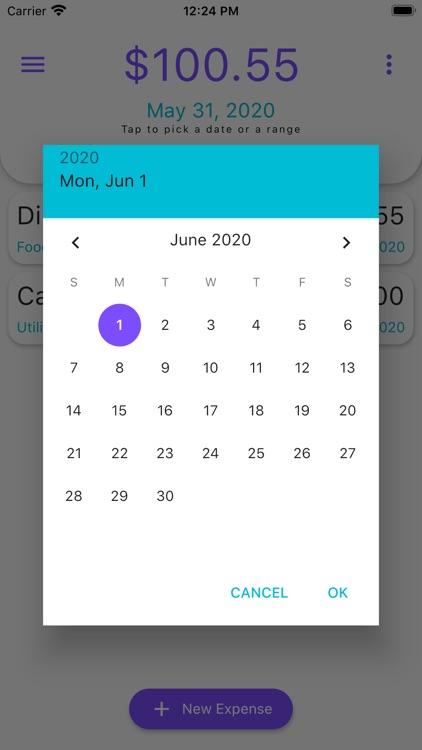 Daily Expense Tracker screenshot-6