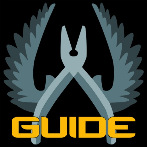 Pro Guide for CS:GO