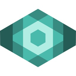 NETx Vision
