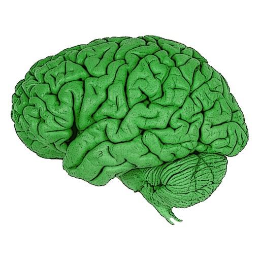 Optimistic Brain