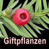 Giftpflanzen Mitteleuropas