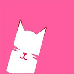 猫咪-交友