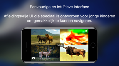 ABC Dutch Dieren screenshot #3
