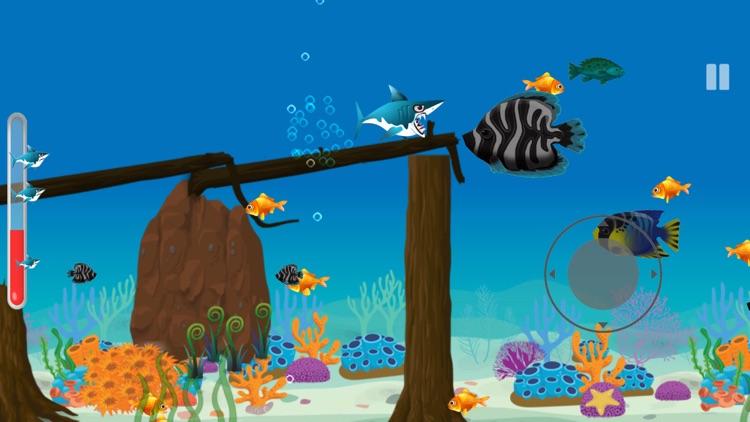 Shark Journey: Feeding Frenzy