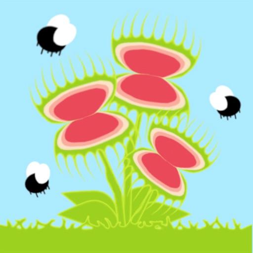 Feeding Flytraps