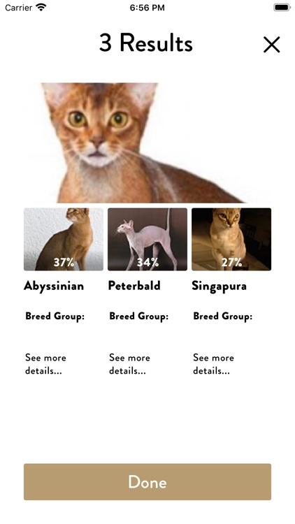 Cats Pedia: Breed identifier screenshot-5